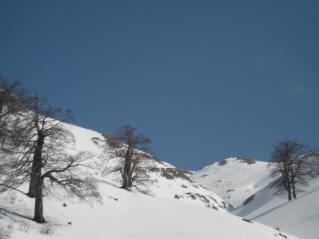Meta (Monte) da Prato di Mezzo 2008-04-02