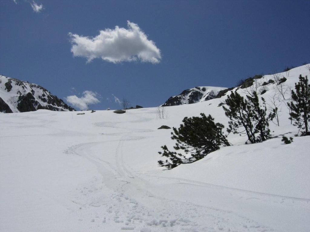 che meraviglia di neve