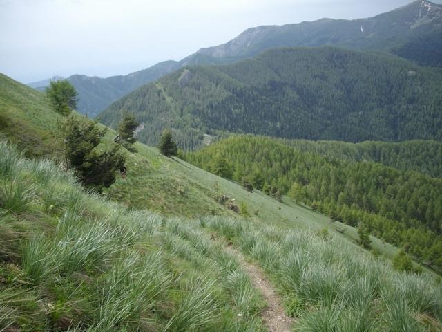 il versante sud ovest del Saccarello