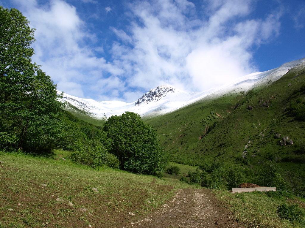 Bussaia (Monte) e Rocca d'Orel da Palanfrè 2008-06-14