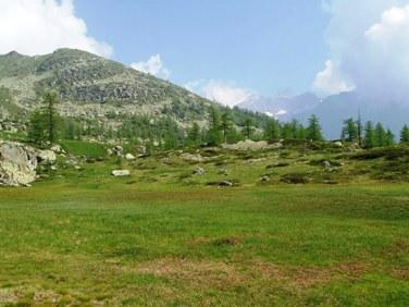 Nei pressi dell'Alpe Pian Muttà