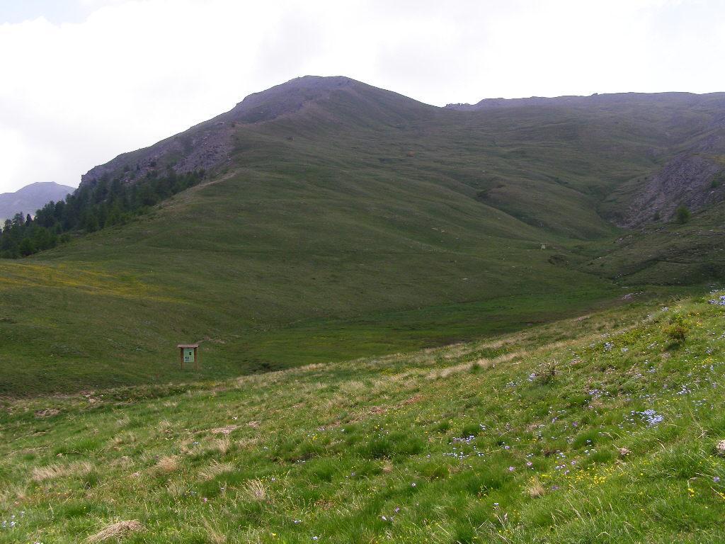 Ecco il Monte Blegier