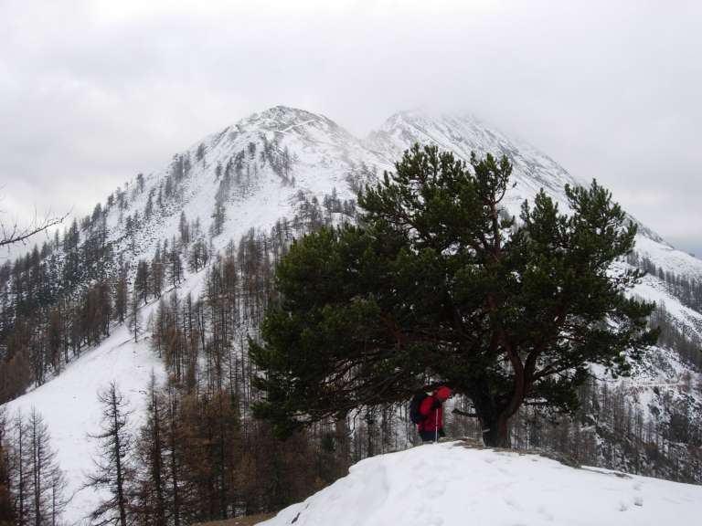 Paillasse (Mont) e Mont Blanc da Rhèmes Saint Georges 2007-03-25