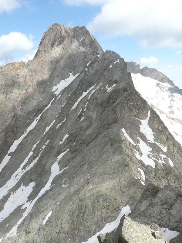 cresta sul dell'argentera dalla vetta