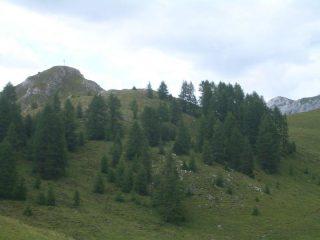 Sasso Croce