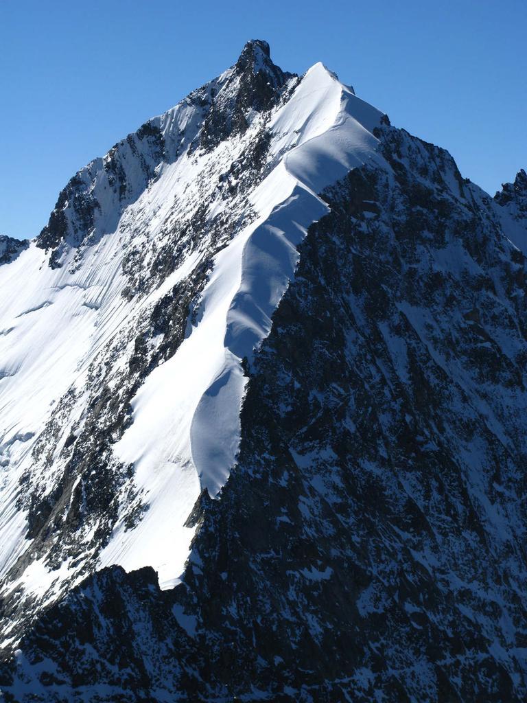 Pizzo Bernina e la splendida Biancograt...visti dalla cima