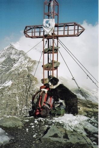 prima neve sull'Aiguillettes