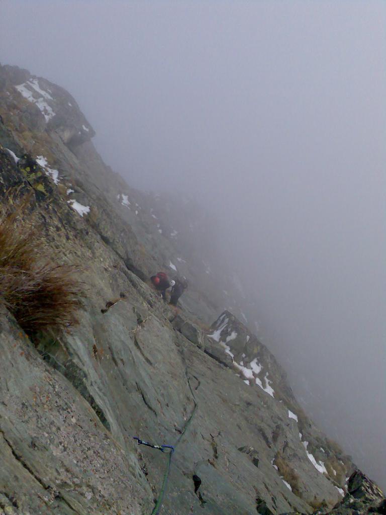 Nel freddo e nella nebbia