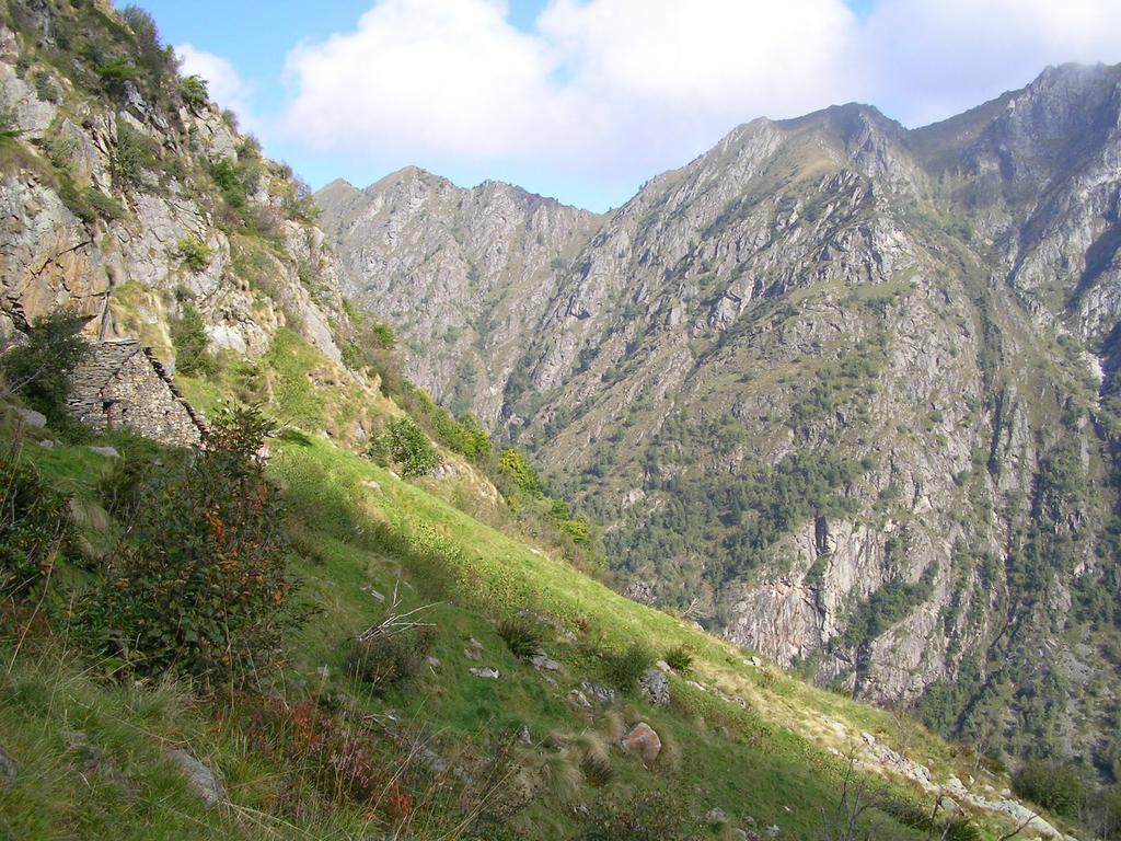 Sopra l'Alpe Vasnera, luogo selvaggio e incontaminato..