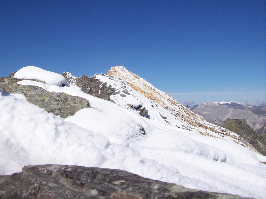 la cresta sommitale vista dalla Punta Adami