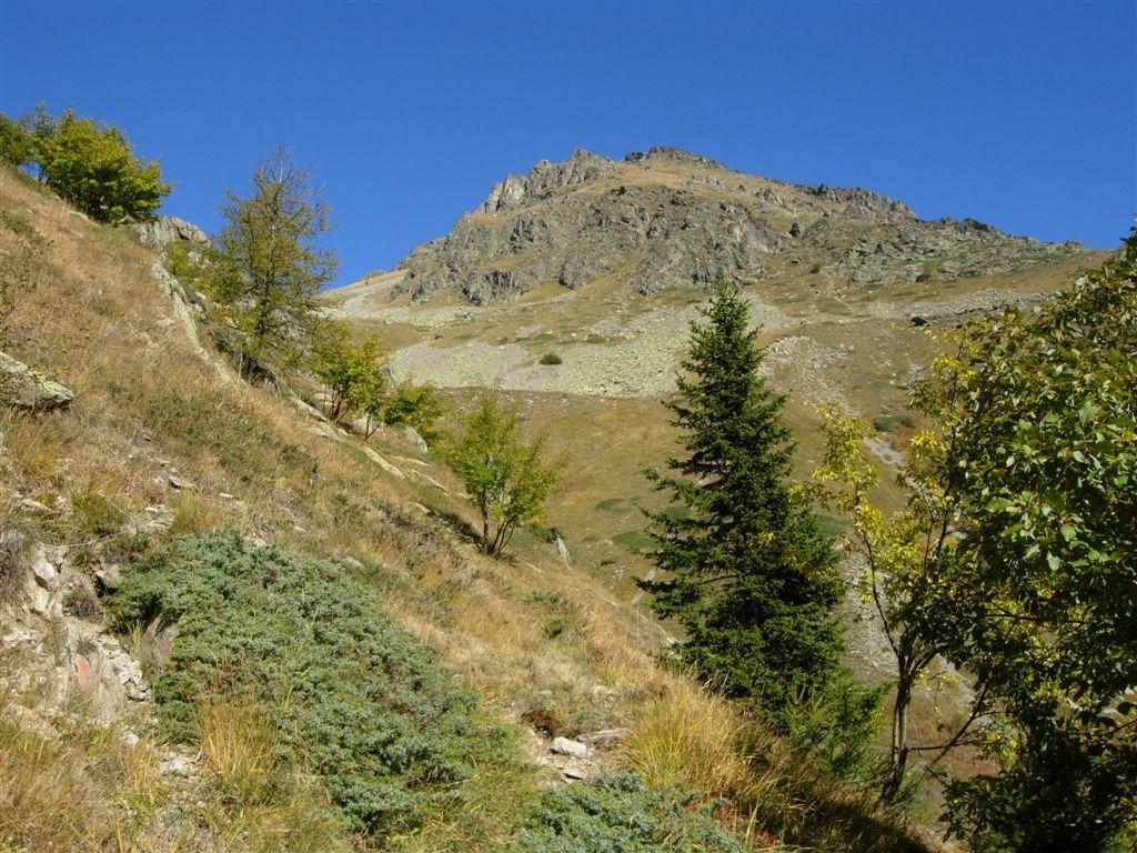 Il monte Saletta dal sentiero salendo