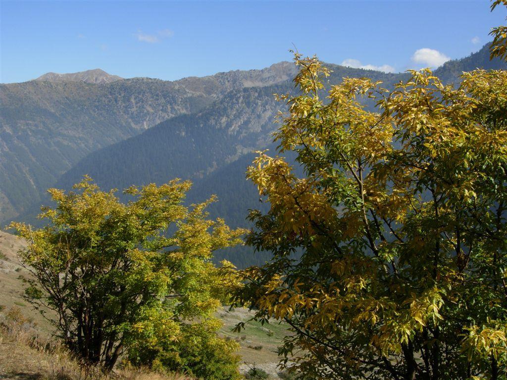 I caldi colori autunnali verso San Bernolfo