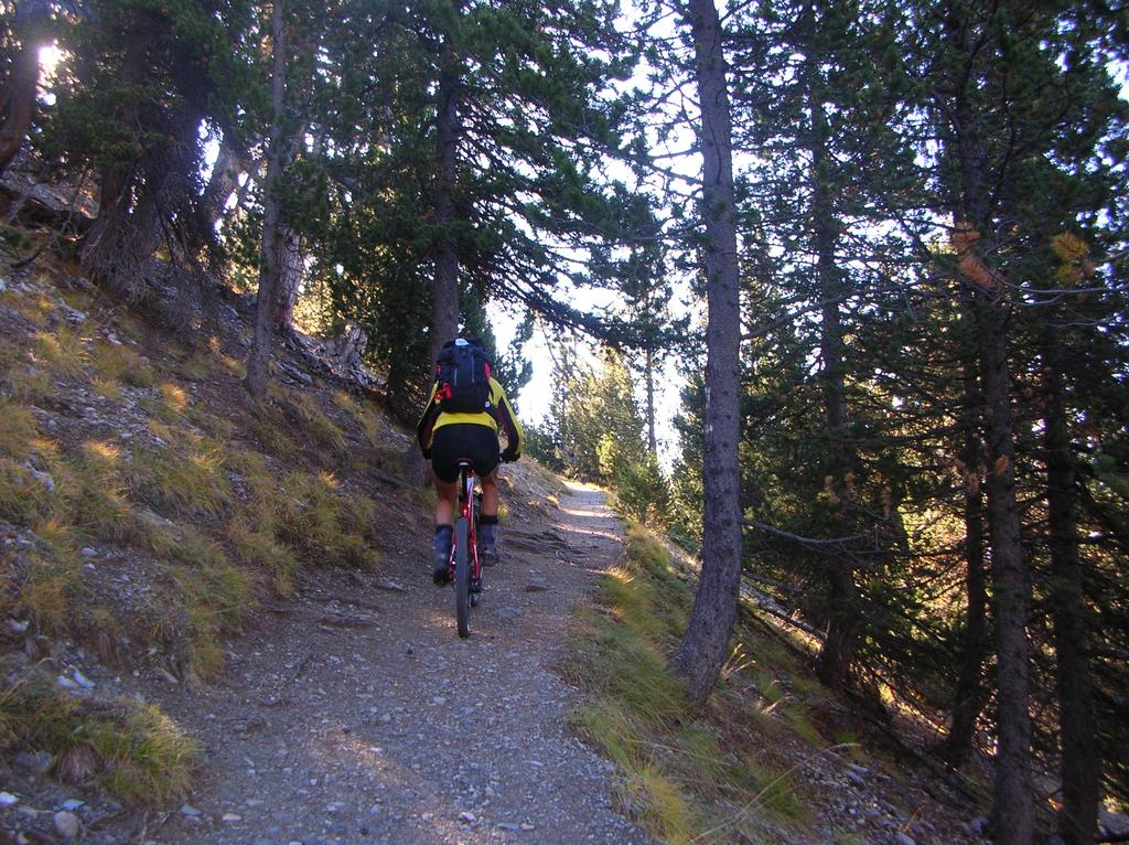 un tratto del sentiero nel vallone del Peas
