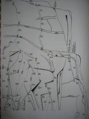 Mappa parete. Calimero all'estrema sx e Formica all'estrema dx