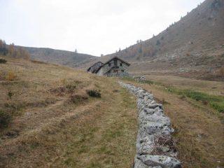 Le alpi ed il Colle della Ranzola