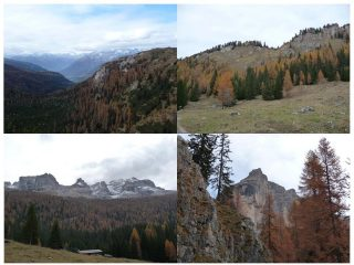 autunno in Vallesinella