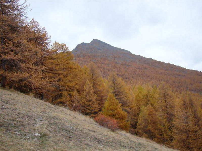 Il Monte Appenna