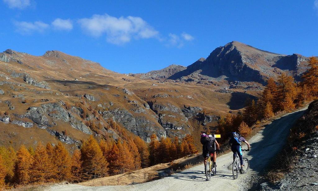 Salendo agli Alpeggi Palasina