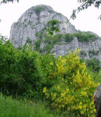 Corno di Canzo Occidentale salendo dalla III alpe