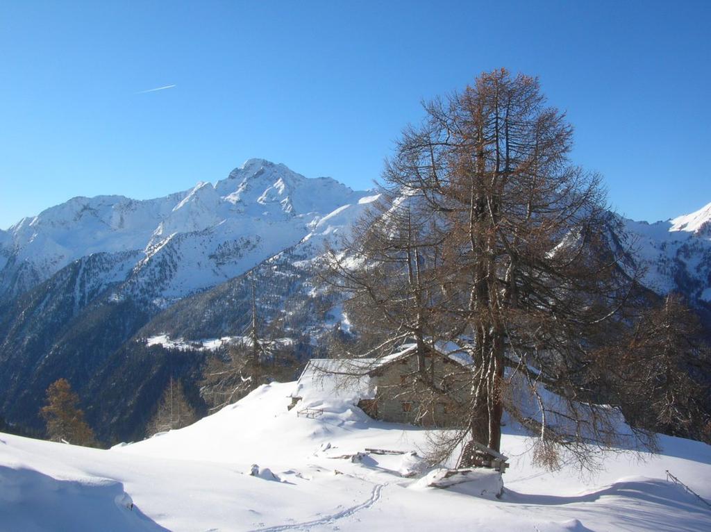 Alpe Hoberg (2005m), sullo sfondo il Mont Nery