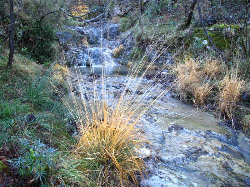 Il torrente Auzza
