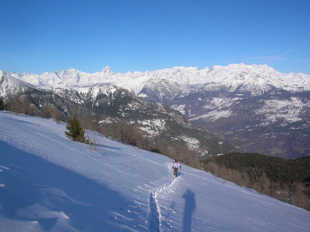 I pendii al termine della dorsale Chalamy-Boccoueil. Sullo sfondo Grandes Murrailles, Cervino e Monte Rosa.