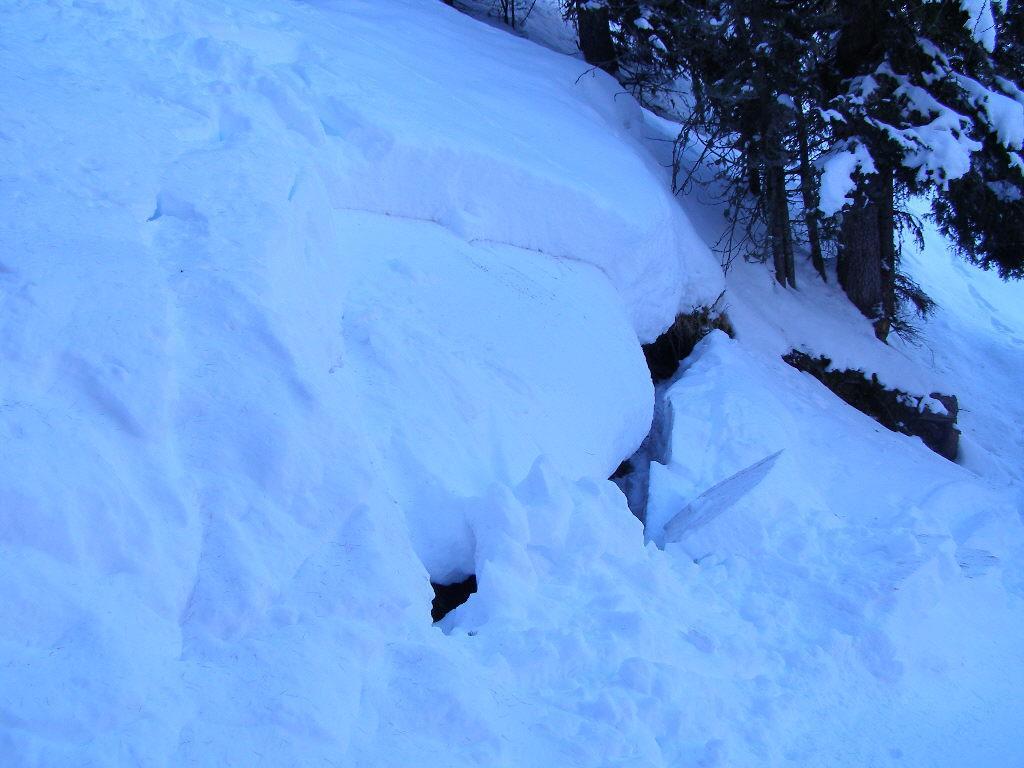 piccolo distacco tra stati di neve nel bosco