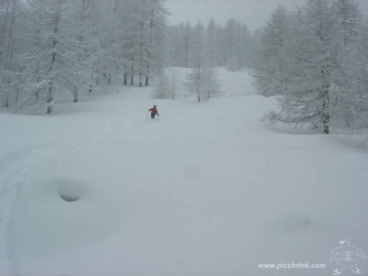 neve canadese in alto
