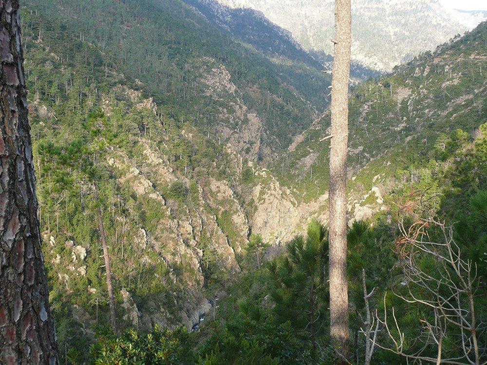 Vallone del Lerca.