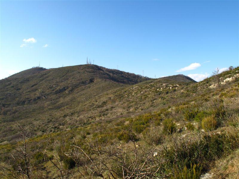 La Punta di Vegliasco (Pisciavino)
