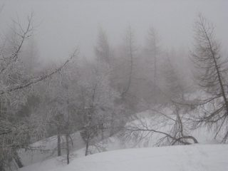 Paesaggio siberiano