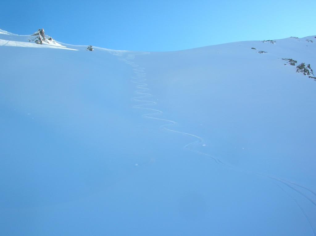 I pendii che dal Colle di Vessona (2789m) scendono nella comba omonima.