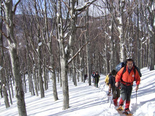 Penna (Monte) dalla Casermetta Forestale 2009-01-11