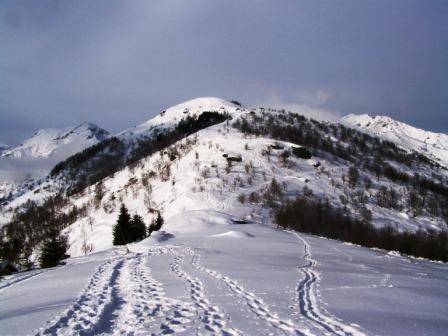 Monte Servin