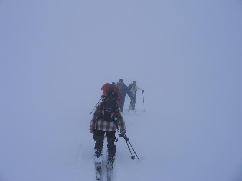 vagando nella nebbia