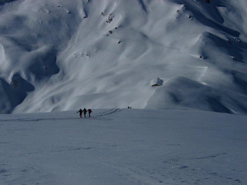 Amici ski-alp in arrivo....