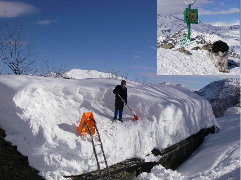 2009 = eccezionali nevicate! e... Diana...