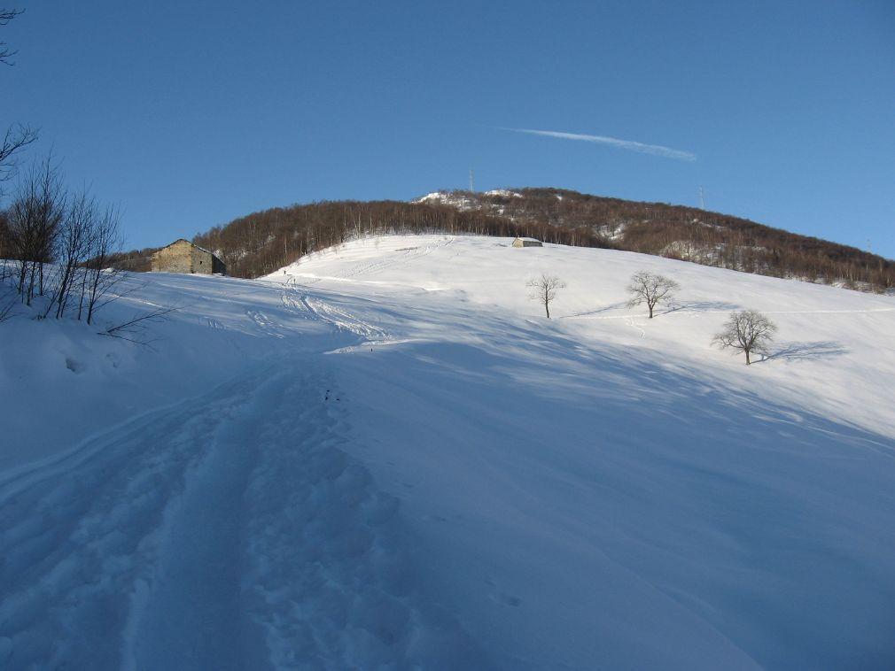 L'Alpe Monsuffietto