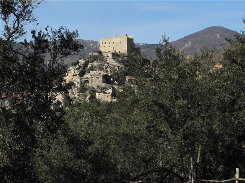 Il castello di Castelvecchio tra gli ulivi