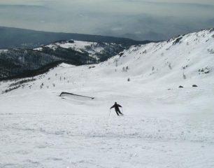 discesa parte bassa (alpe Valnera)