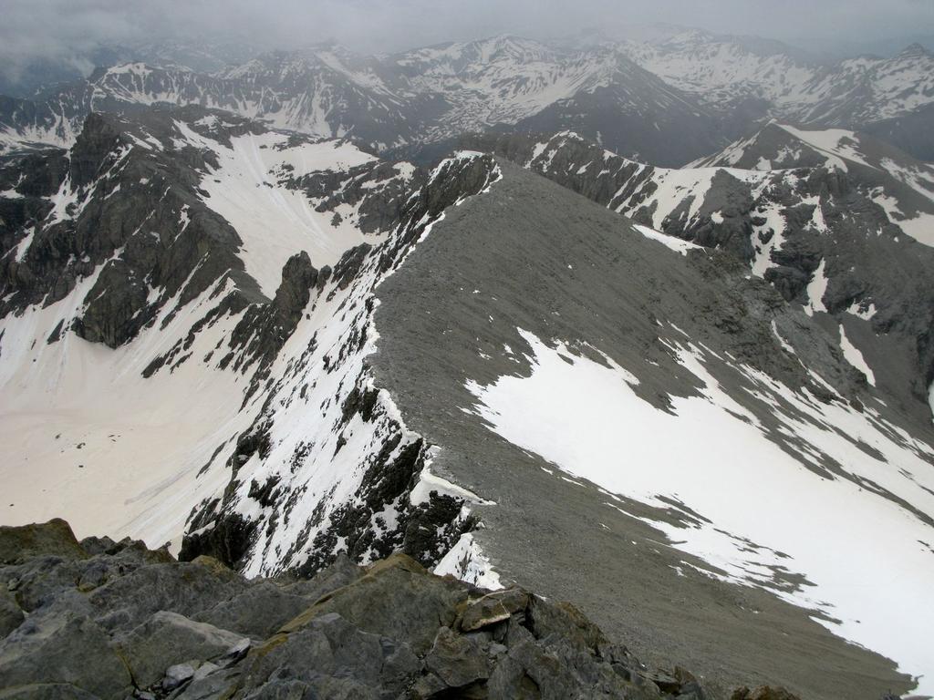 panorami osservati dalla cima : il Petit Mont Pelat m. 2973 (1-6-2008)