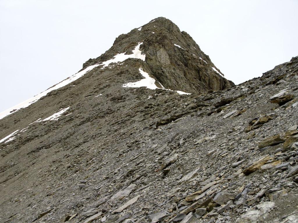 il Mont Pelat osservato dal colletto di quota 2800 m. (1-6-2008)