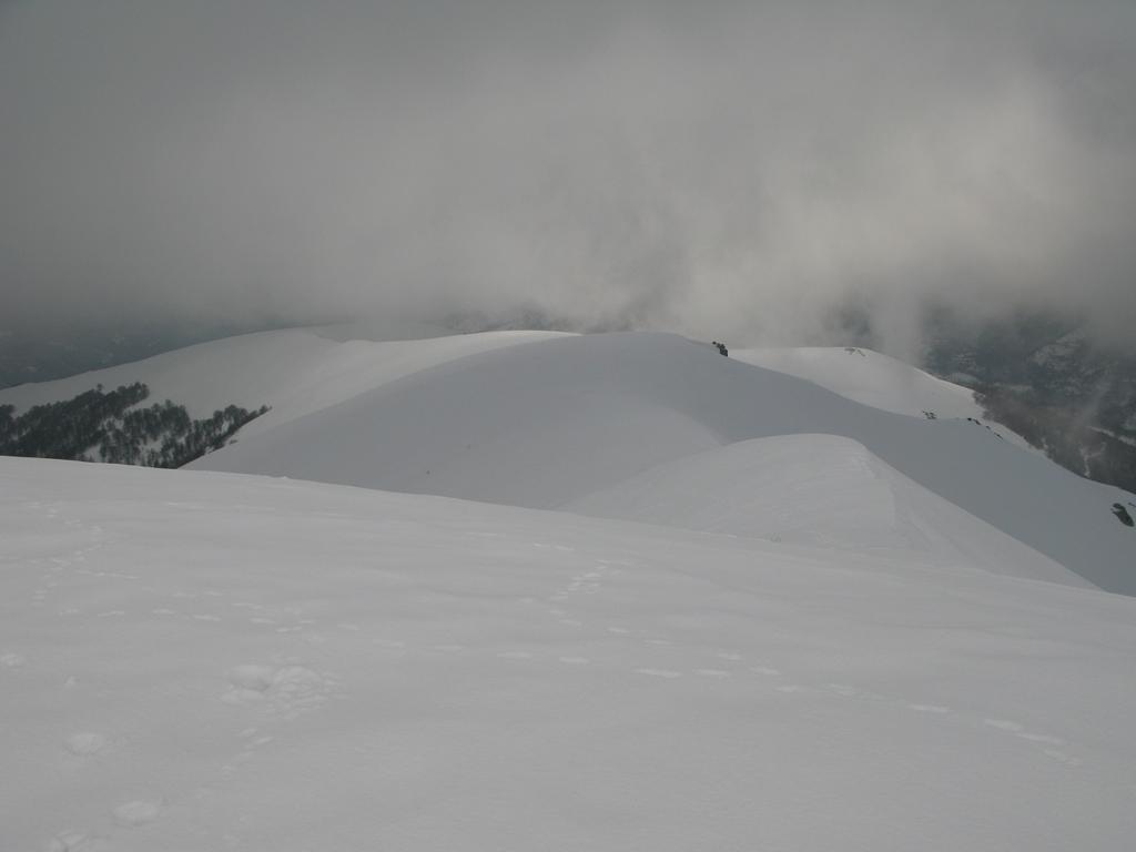Baussetti (Monte) da Camperi per il Vallone Borello 2009-03-03