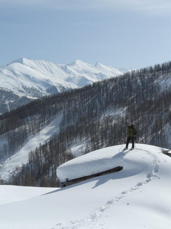 sull'alpe brun!