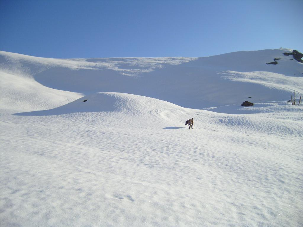 Giass Cmun sepolto dalla neve