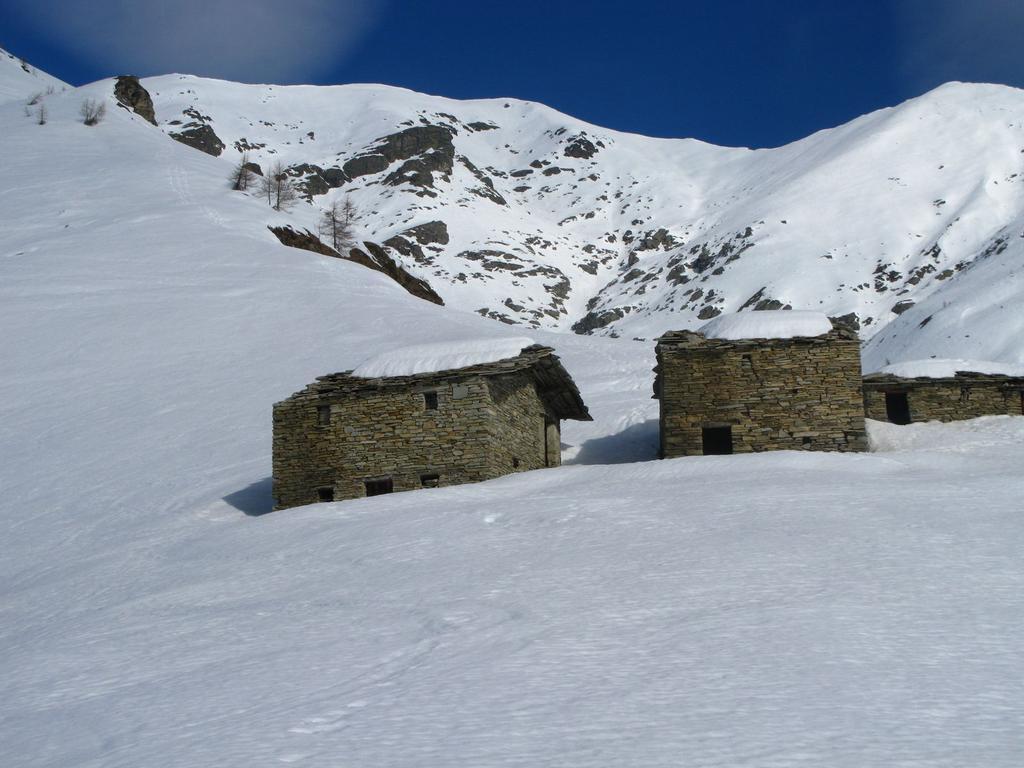 le Meire Compercie alla base del versante Sud del Frioland (14-3-2009)