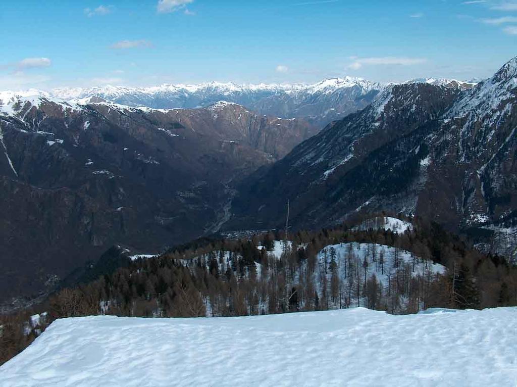 Pizzetto (Il) da Fontane 2009-03-23