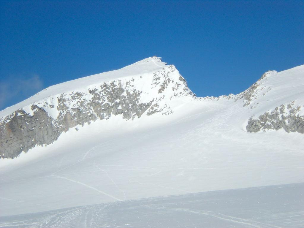 L'Adamello dal Pian di Neve