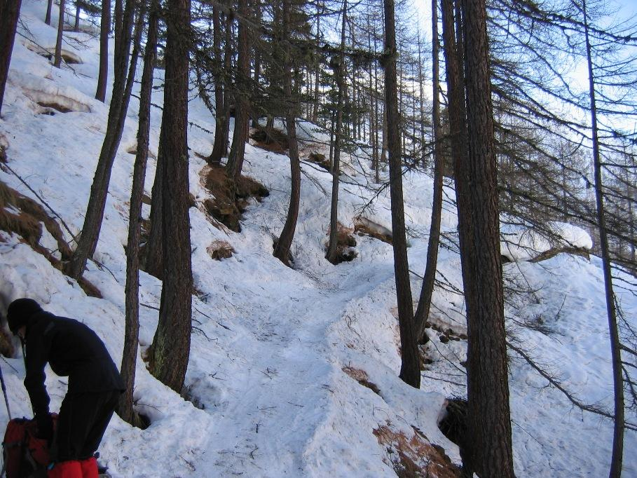 Il sentiero scarsamente innevato ma mooooolto ghiacciato