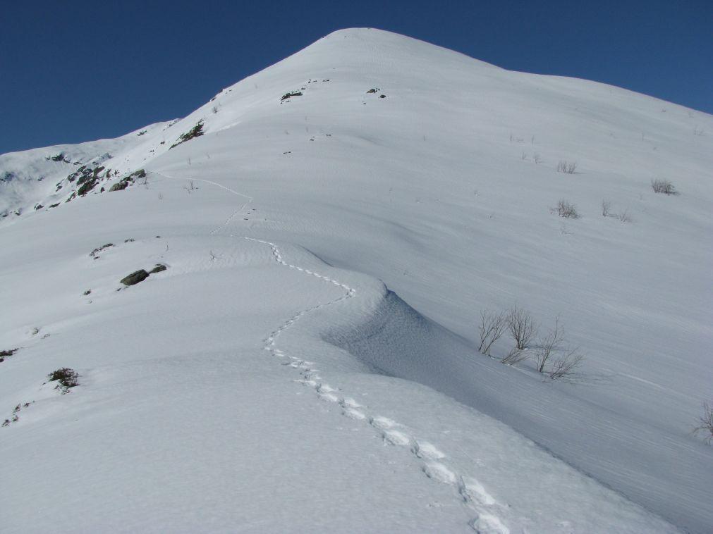 La cresta nord-est dell'antecima Palit quota 2070